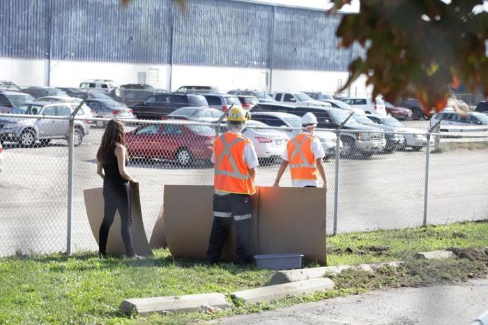 cardboard barriers (andrea white).jpg